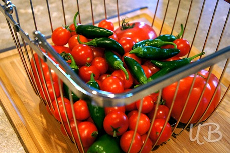 jalepenos-and-tomatoes-in-basket