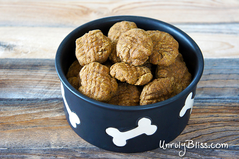 Homemade Pumpkin Dog Treats from UnrulyBliss.com