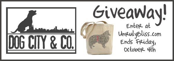 Dog City & Co Giveaway at UnrulyBliss.com
